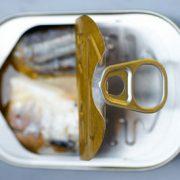 boite_sardine